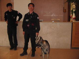 K9 unit at Shilla Jeju