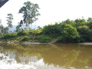 Trip to johore jungle 1123